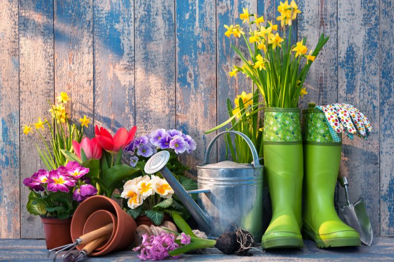 A Beautiful Home – A Beautiful Garden!