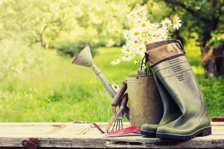 Garden Trends for 2019
