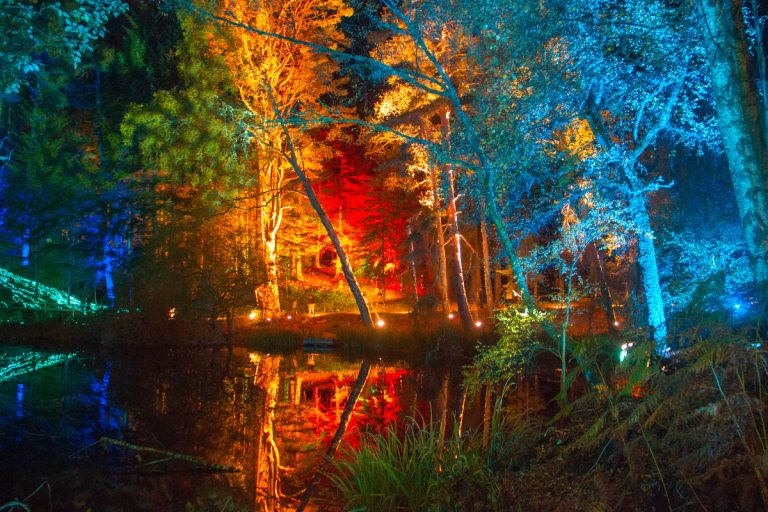 The Enchanted Forest, Perthshire