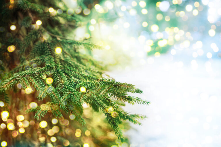 Have Yourself a Merry Eco Christmas!