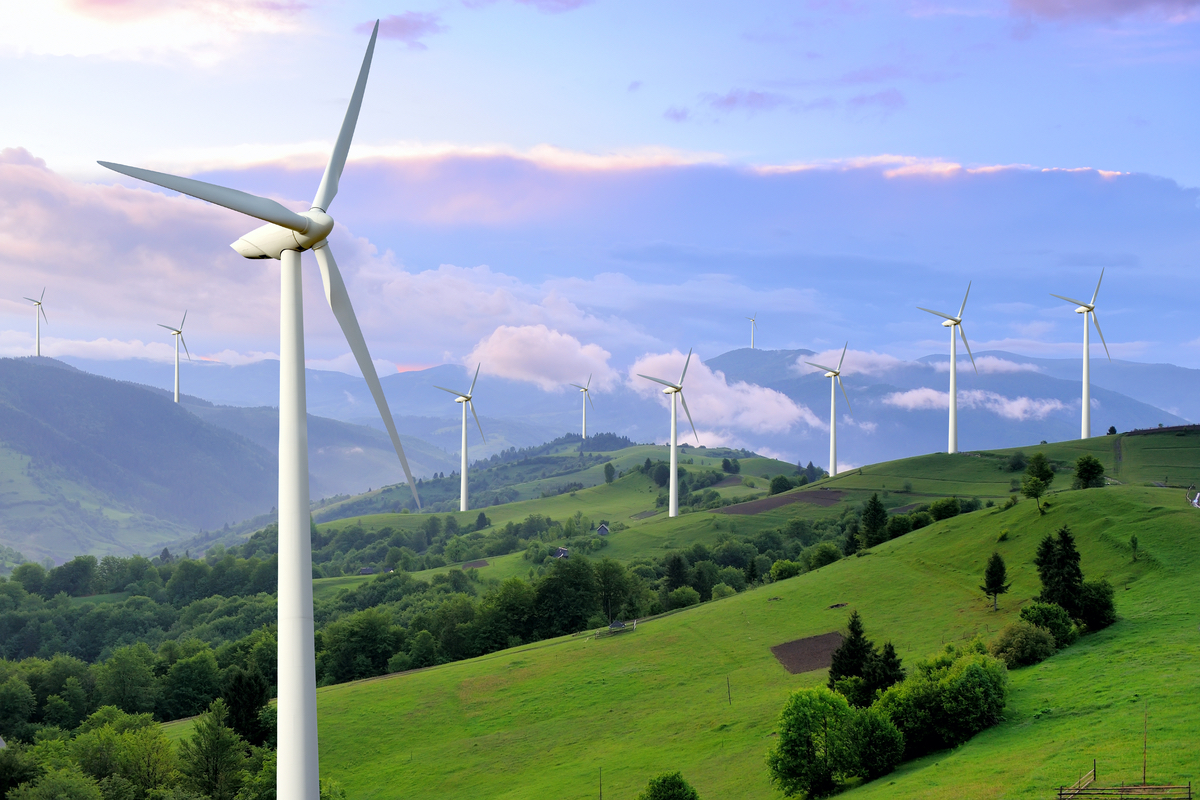 Britain's Greenest Year on Record