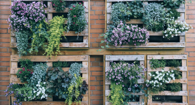 Maximise the Space in Your Garden